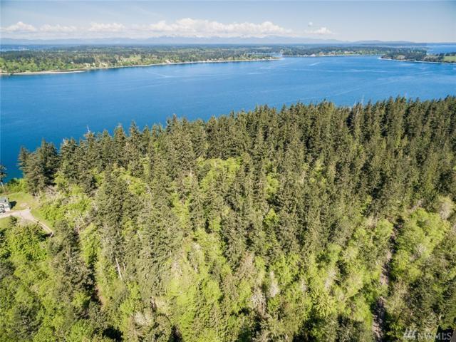 0 Xxx Steffensen Rd, Anderson Island, WA 98303 (#1444790) :: Keller Williams Realty Greater Seattle