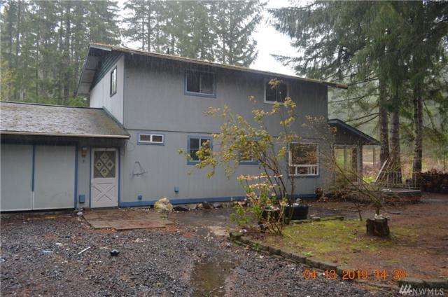 80 N Lake View Dr, Hoodsport, WA 98548 (#1444809) :: McAuley Homes
