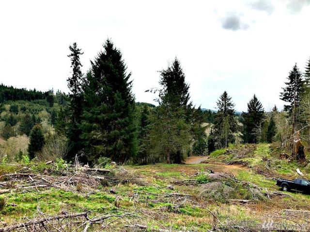 259 Hull Creek Rd, Grays River, WA 98621 (#1445422) :: Homes on the Sound