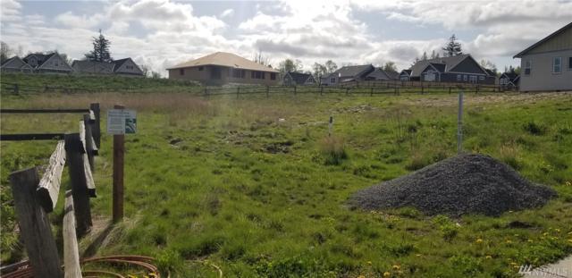 5946 April Lane, Ferndale, WA 98248 (#1445733) :: McAuley Homes