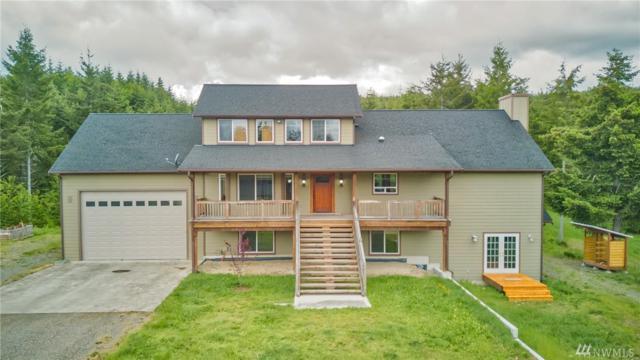 8100 Nanitch Lane SE, Tenino, WA 98589 (#1445952) :: Platinum Real Estate Partners