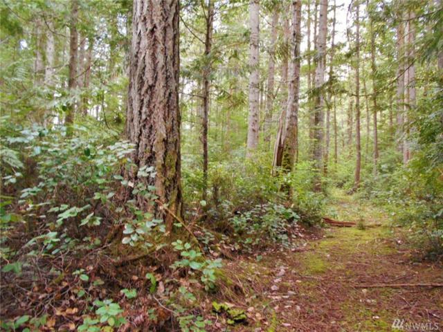 0 Rhododendron Lane, Brinnon, WA 98320 (#1446052) :: Kimberly Gartland Group