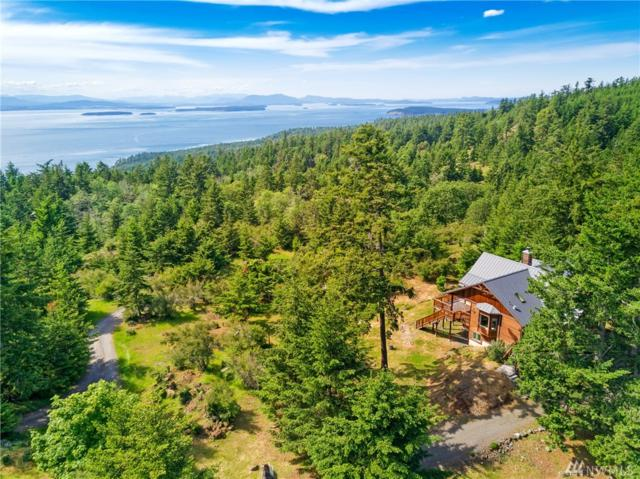 151 Stormridge Rd, San Juan Island, WA 98250 (#1446263) :: Kimberly Gartland Group