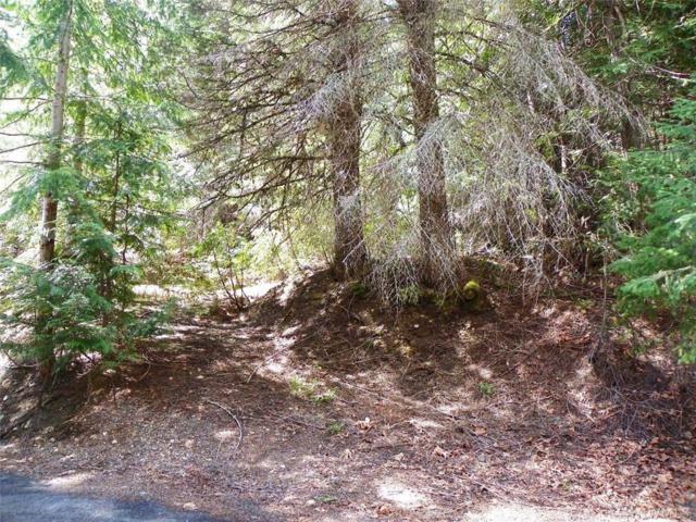 0-Lot58-59 Mountain Home Lane, Easton, WA 98925 (#1446336) :: Chris Cross Real Estate Group