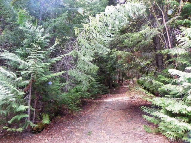 60-Lot 60 Mountain Home Lane, Easton, WA 98925 (#1446356) :: Mosaic Home Group