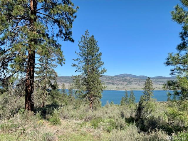 39175 Gunsight Bluff N, Seven Bays, WA 99122 (#1446493) :: Kimberly Gartland Group