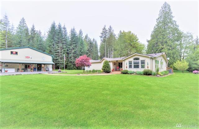 184 Naugle Rd, Mineral, WA 98355 (#1446543) :: Record Real Estate