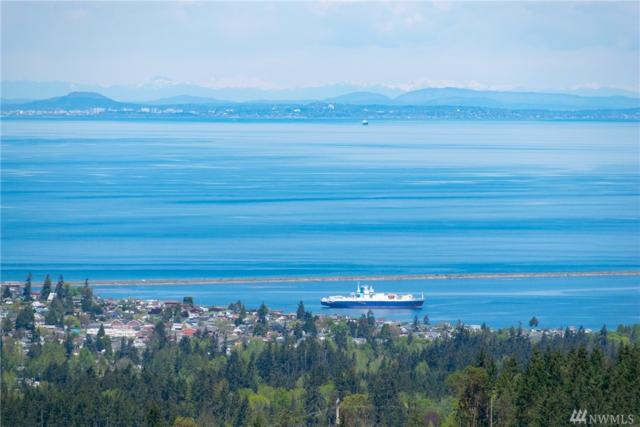 9999 Harbor View Dr, Port Angeles, WA 98363 (#1446703) :: Homes on the Sound