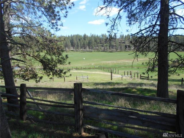 0 S Spokane-Cheney Rd, Cheney, WA 99004 (#1446784) :: Kimberly Gartland Group