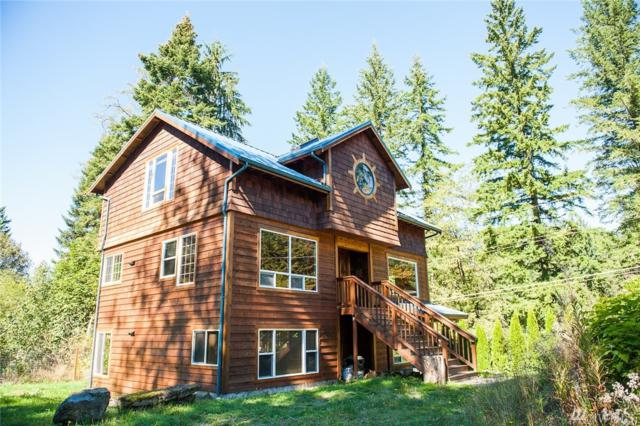 11061 Whistler Lane, Glacier, WA 98244 (#1446820) :: Real Estate Solutions Group