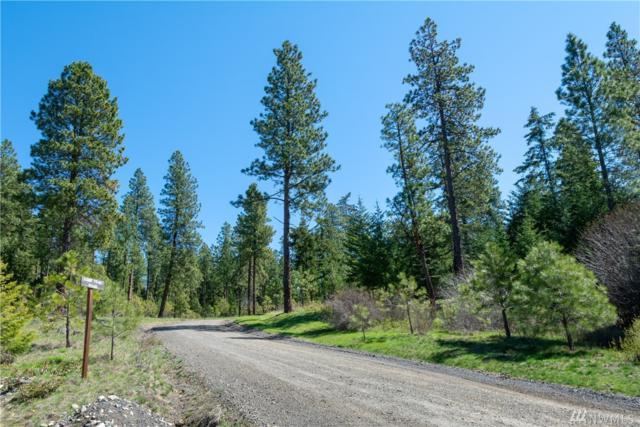 0 Game Trail Rd, Cle Elum, WA 98922 (#1447058) :: Kimberly Gartland Group