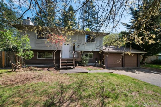 9604 138th St Ct NW, Gig Harbor, WA 98329 (#1447597) :: Ben Kinney Real Estate Team