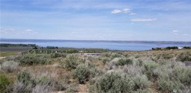 6820 SE Road 8.8, Othello, WA 99344 (#1447625) :: Kimberly Gartland Group
