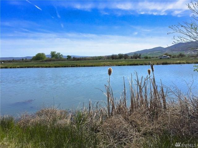 2-xx Heron Farm Lane, Ellensburg, WA 98926 (#1447669) :: Kimberly Gartland Group