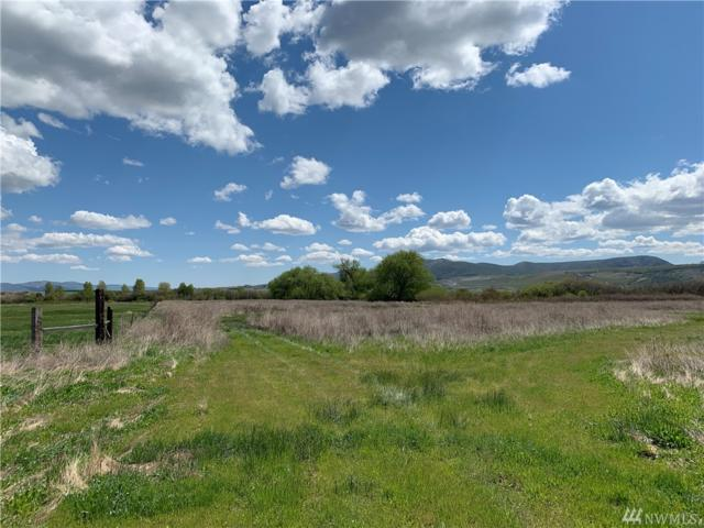 7-xx Heron Farm Lane, Ellensburg, WA 98926 (#1447670) :: Kimberly Gartland Group