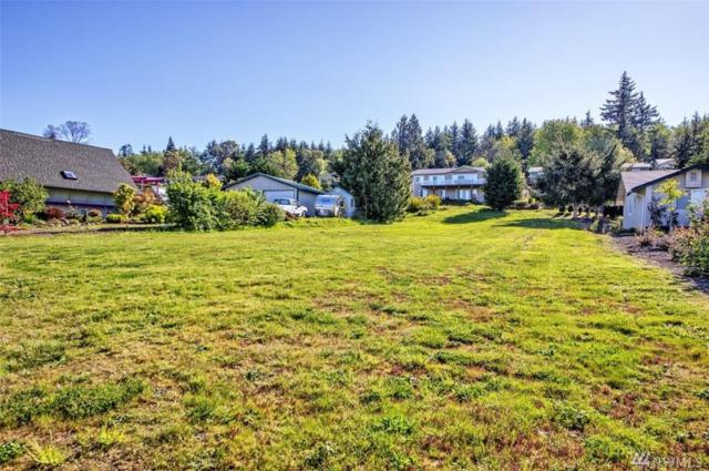 37420 Buck Rd NE, Hansville, WA 98340 (#1448257) :: Kimberly Gartland Group