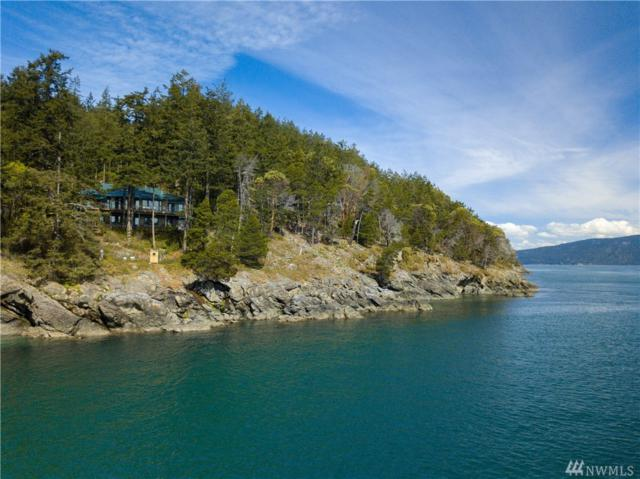 423 Peapod Lane, Orcas Island, WA 98279 (#1448283) :: Real Estate Solutions Group