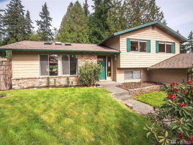 201 215th St SE, Bothell, WA 98021 (#1448409) :: The Kendra Todd Group at Keller Williams