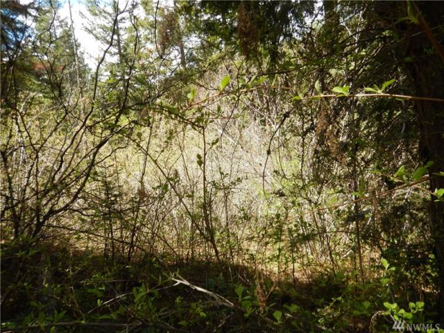 0-lot Thornton Creek Lane, Cle Elum, WA 98922 (#1448915) :: Keller Williams Realty
