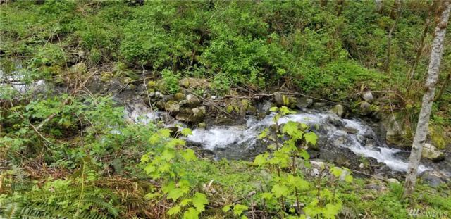 0-632xx High Ridge Dr, Marblemount, WA 98267 (#1449065) :: Kimberly Gartland Group