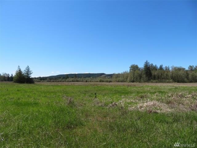 2762 State Route 505, Toledo, WA 98591 (#1450080) :: Homes on the Sound