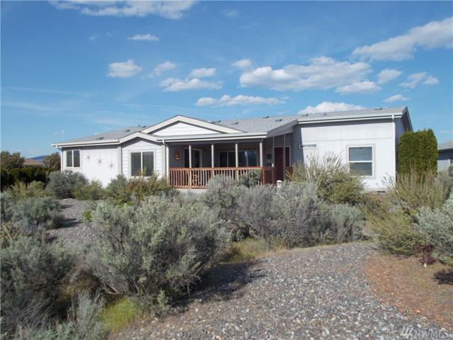 217 SW Moon River View, Mattawa, WA 99349 (#1450559) :: Kimberly Gartland Group