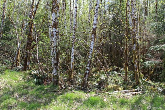 0 Grouse Glen, Port Angeles, WA 98363 (#1450813) :: Homes on the Sound