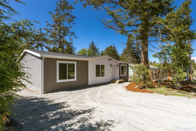 4353 Terrace, Oak Harbor, WA 98277 (#1450977) :: Kimberly Gartland Group