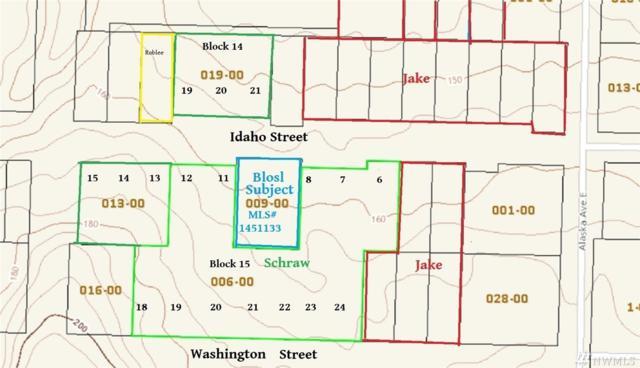 9999 Idaho St, Port Orchard, WA 98366 (#1451133) :: The Kendra Todd Group at Keller Williams