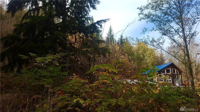 7476 Heller Lane, Maple Falls, WA 98266 (#1451208) :: The Royston Team