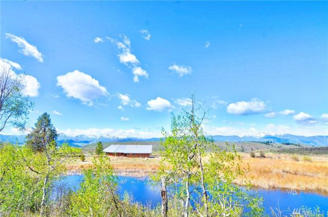 325 Bear Creek Rd, Winthrop, WA 98862 (#1451346) :: Kimberly Gartland Group