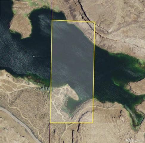 0-NNA Blythe Lake Public Access Rd, Othello, WA 99344 (#1451997) :: Platinum Real Estate Partners