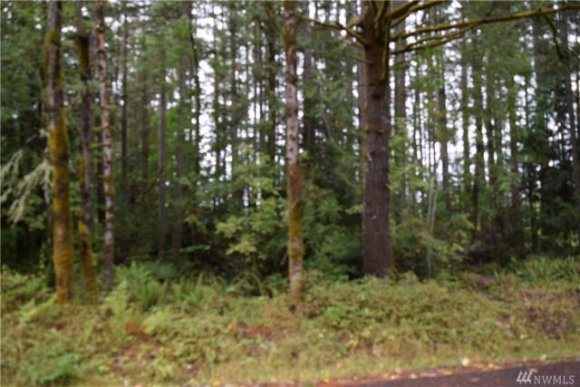 30 E Ridgeview Dr, Shelton, WA 98584 (#1452002) :: Keller Williams Western Realty