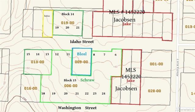 9999 Alaska St, Port Orchard, WA 98366 (#1452220) :: Kimberly Gartland Group