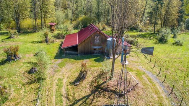 19045 NE 296th Place NE, Duvall, WA 98019 (#1452736) :: Keller Williams Realty Greater Seattle