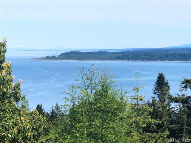 999 Ocean Cove Lane - Lot 7 Road, Port Angeles, WA 98363 (#1452738) :: Ben Kinney Real Estate Team
