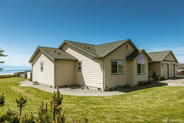 767 El Cine, Coupeville, WA 98239 (#1452955) :: Ben Kinney Real Estate Team