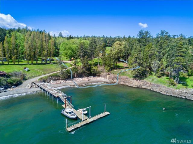 11009 Mail Bay, Waldron Island, WA 98297 (#1453023) :: Pacific Partners @ Greene Realty