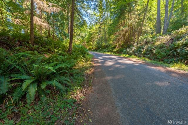 1182 Scenic Ave, Lummi Island, WA 98262 (#1453155) :: Canterwood Real Estate Team