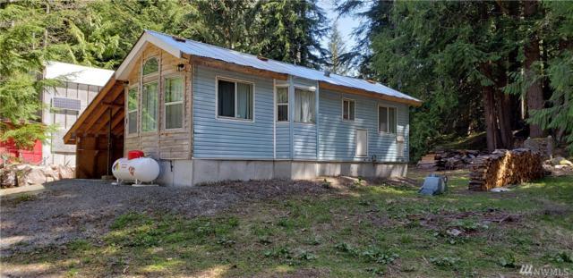 11902 876th Place NE, Skykomish, WA 98288 (#1453171) :: Ben Kinney Real Estate Team