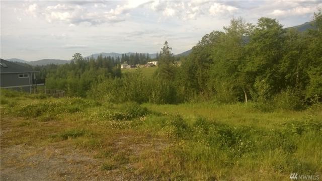 0-239XX Nookachamp Hills Dr, Mount Vernon, WA 98274 (#1453310) :: Alchemy Real Estate