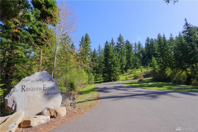 6-Lot Lake Forest Dr, Ronald, WA 98940 (#1453327) :: Ben Kinney Real Estate Team