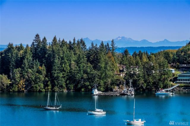 0 Lot 9 Marianne Meadows, Port Ludlow, WA 98365 (#1453339) :: Northern Key Team