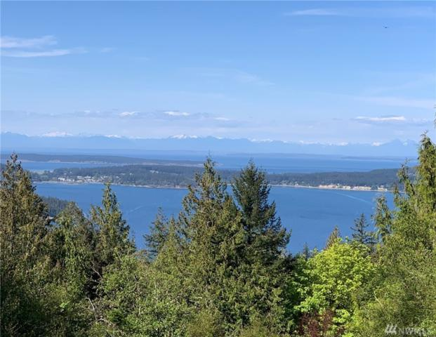 701 Spring Hill, Orcas Island, WA 98245 (#1453692) :: Homes on the Sound