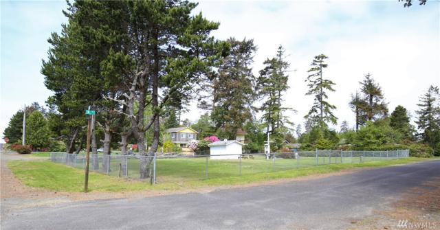 30611 N Place, Ocean Park, WA 98640 (#1453716) :: Platinum Real Estate Partners