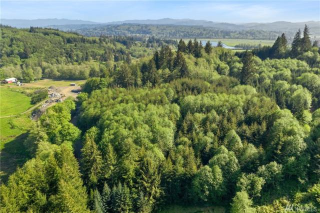 0 Elk Creek Rd, Raymond, WA 98577 (#1453755) :: Kimberly Gartland Group