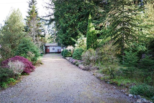 422 Sprague Valley Dr, Maple Falls, WA 98266 (#1454093) :: Kimberly Gartland Group
