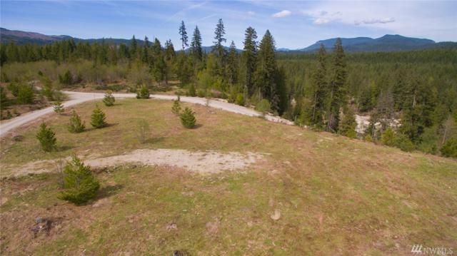 3 Big Foot Blvd, Cougar, WA 98616 (#1454566) :: Keller Williams Realty