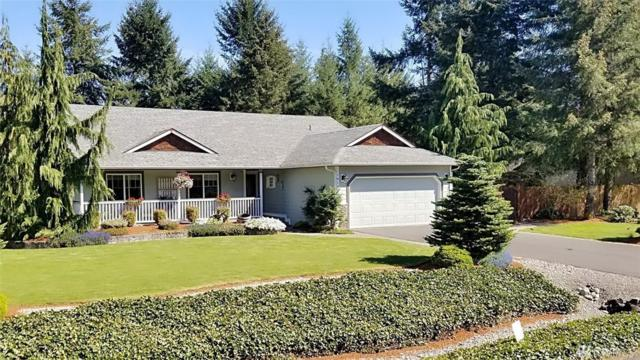 18106 Prairie Pointe Lane SW, Rochester, WA 98579 (#1454605) :: Real Estate Solutions Group