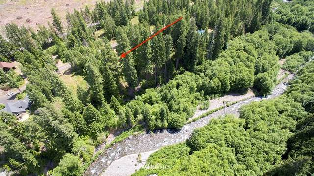 0 Lodgepole Lane, Cougar, WA 98616 (#1454633) :: Icon Real Estate Group